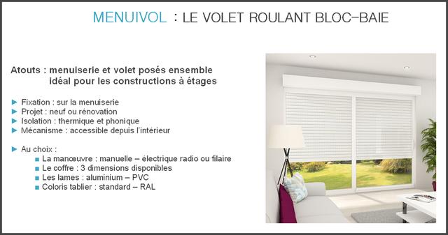 moustiquaire sur mesure nouveaut volet roulant bloc baie. Black Bedroom Furniture Sets. Home Design Ideas